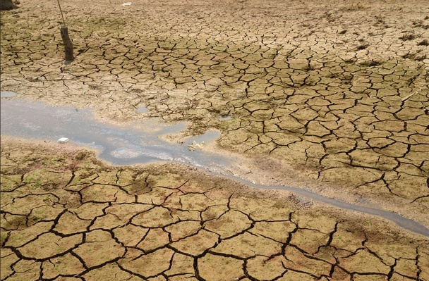 drought 2014
