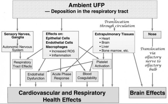 Ambient-UFA-Depositionin-the-respiratory-tract-HEI-750x463