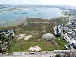 UCSD marsh restoration project overview