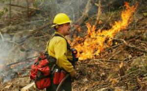 fireman fire