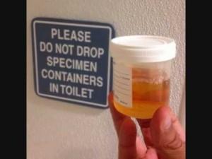 pee cup