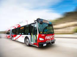 fuzzy bus