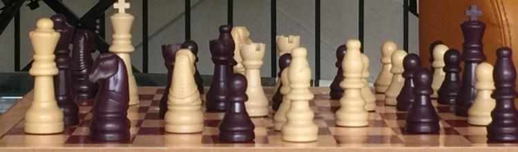 ChessBoard-750x221