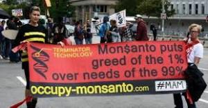 Monsanto 99 per cent