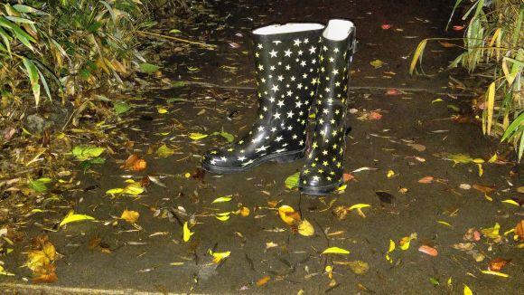 boots rain 1_5_16