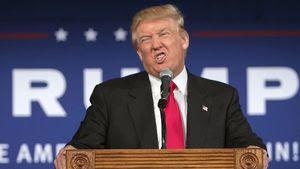 Trump scrunchface