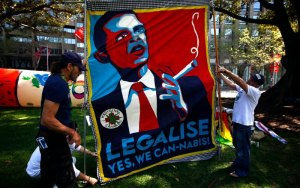 Three people setting up a banner : Legalise - Yes We Cannabis!