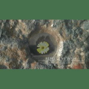 Reflective Wave   Geo-Poetic Spaces