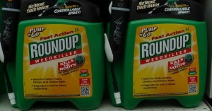 As Monsanto Glyphosate Case Moves to Trial, Man Dying of Cancer Gets Day in Court