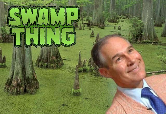 """Collage, labeled """"SWAMP THING"""", of cypress swamp and head shot of Scott Pruitt."""