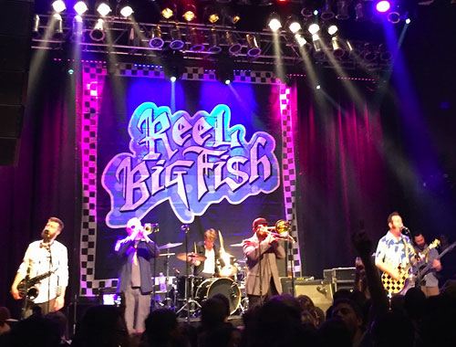 Reel Big Fish Feat