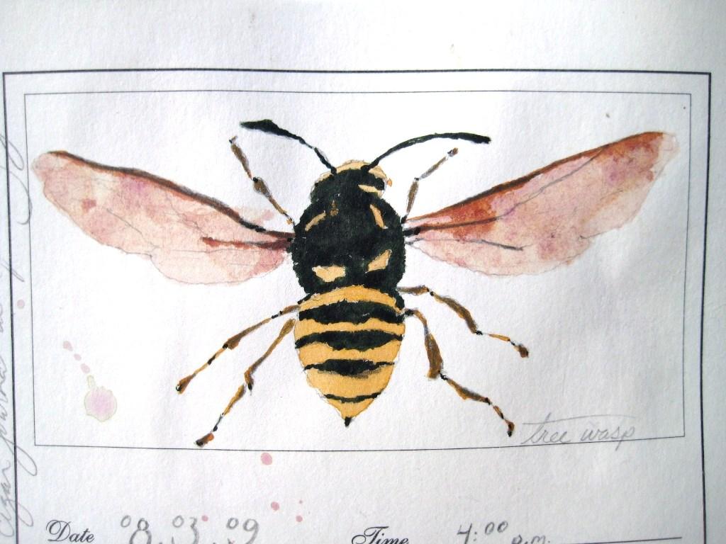 close-up bee