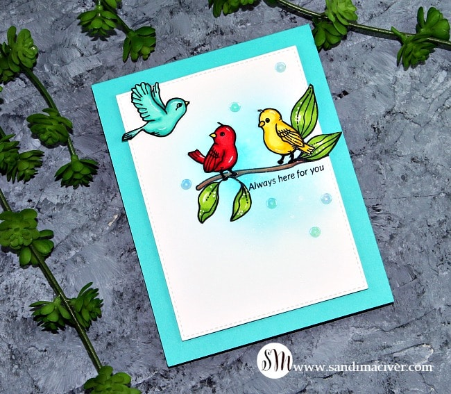 A Rainbow of Birds - SSS Look for the Rainbow Stamp Set