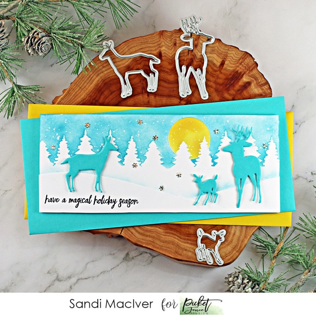new card making and paper crafting products from Picket Fence Studios