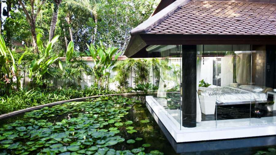 Banyan tree room garden pool