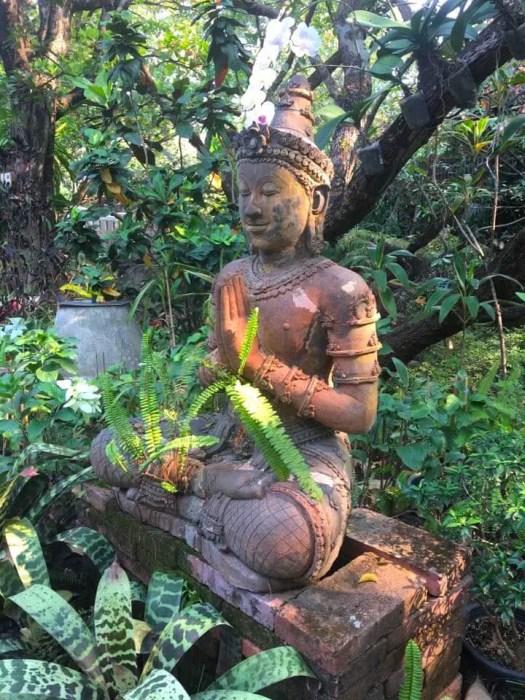 Buddha statue expat in Chiang Mai