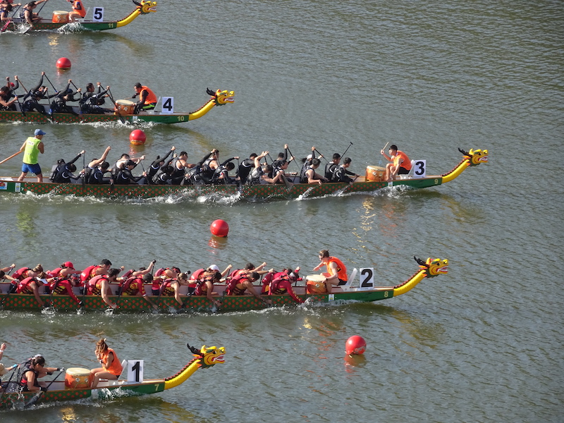 dragon boats in water