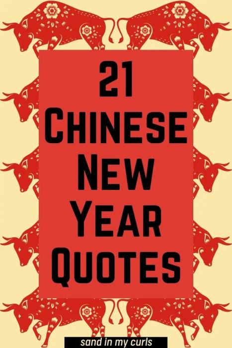 Happy Chinese New Year pin.