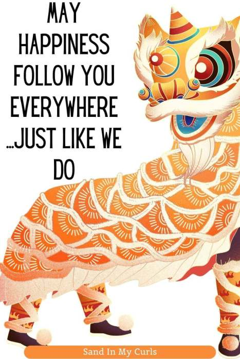 quotes about Chinese New year funny with lion