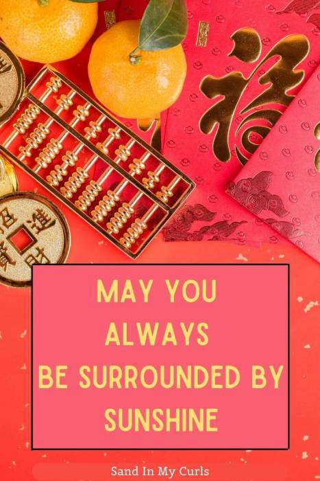 Chinese new year quotes about sunshine
