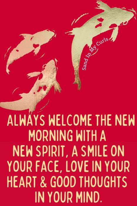 Chinese wish phrases red background with gold koi