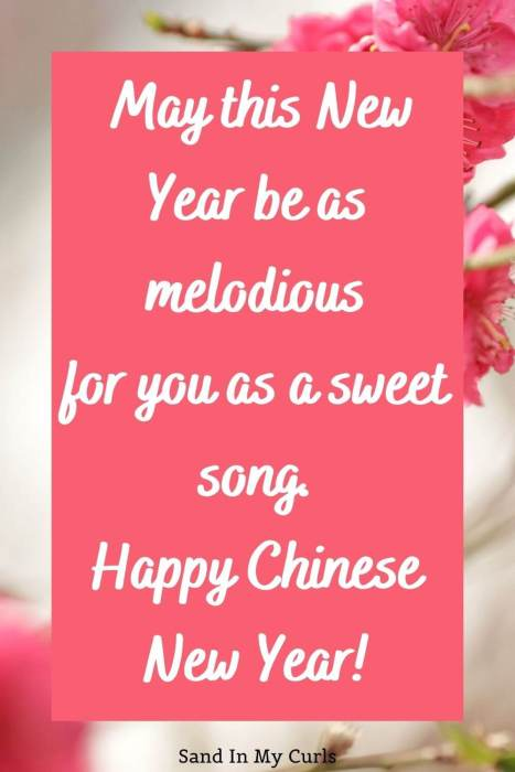 Chinese New Year wish for a friend