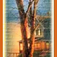 BOOKMARKS: Houses and Barns