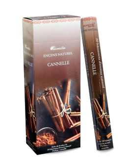 CANNELLE (Cinnamon)  AROMATIKA HEXA