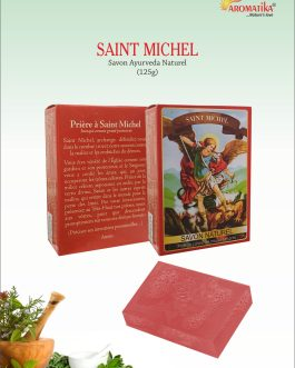 SAVON SAINT MICHEL (Parfum : Santal)
