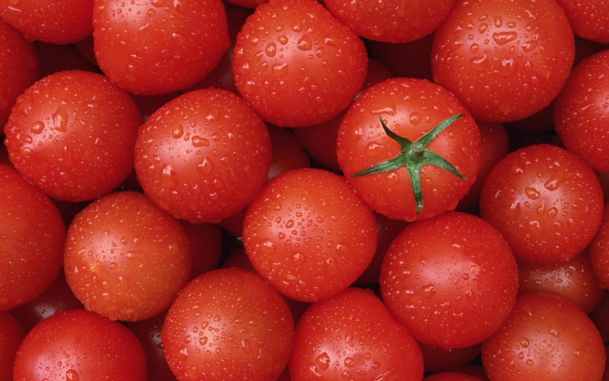 Storing Fresh Fruits and Vegetables For Better Taste