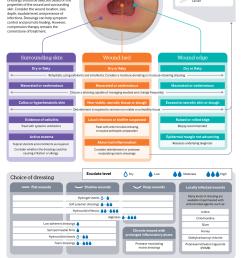 wound assessment diagram [ 1000 x 1456 Pixel ]