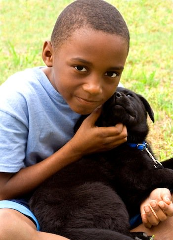 How Service Dogs Benefit People on the Autism Spectrum