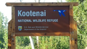 Bonners Ferry Kootenai Wildlife Refuge