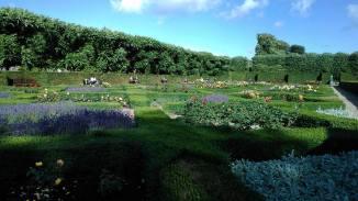 Koningspark-rozentuin