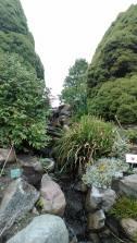 botanische tuin 3