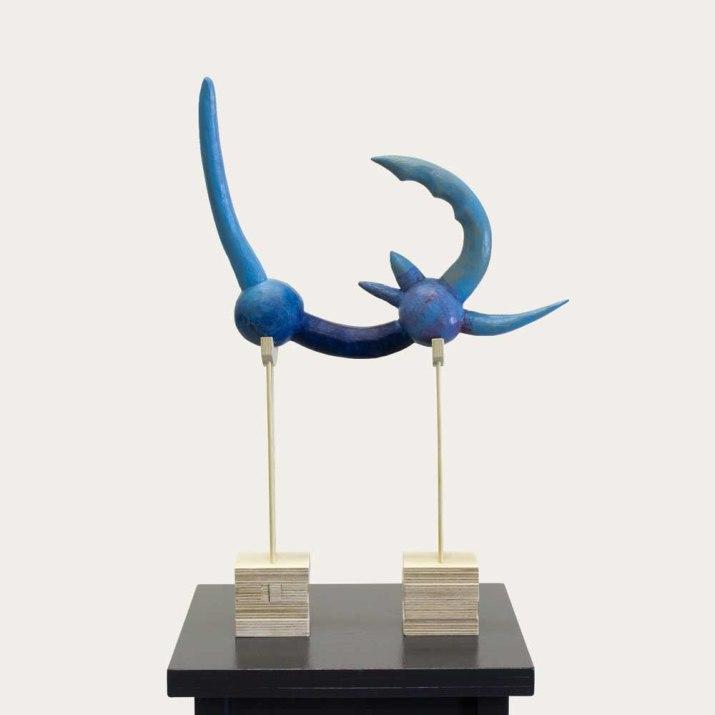 de-blauwe (2)-1000