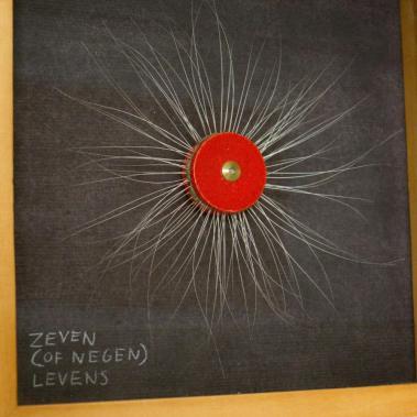 Zeven (of negen) levens