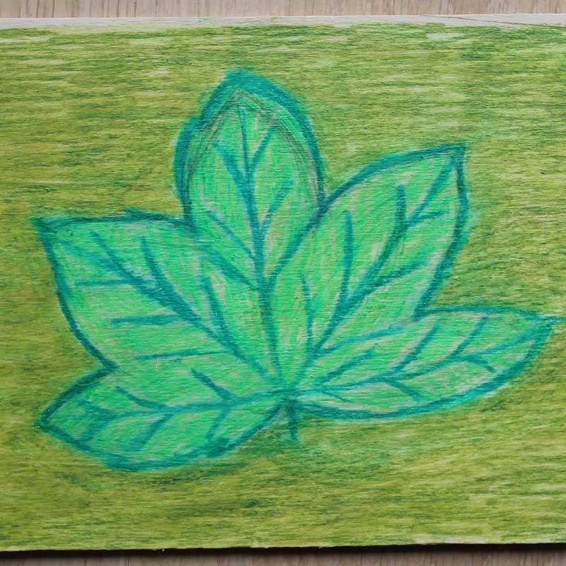Schets van een blad op hout