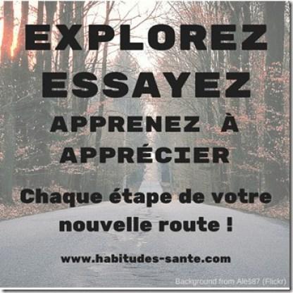 explorez, essayez, apprenez à apprécier chaque étape de votre nouvelle route. citation, motivation, maigrir