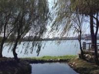 Aussicht auf den Lotus See