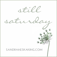 Still Saturday logo