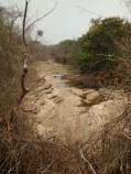 Embalse de Burro negro, cauce seco del río
