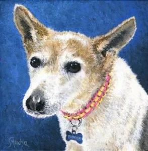 Jack Russel Terrier © Sandra Mucha - SOLD
