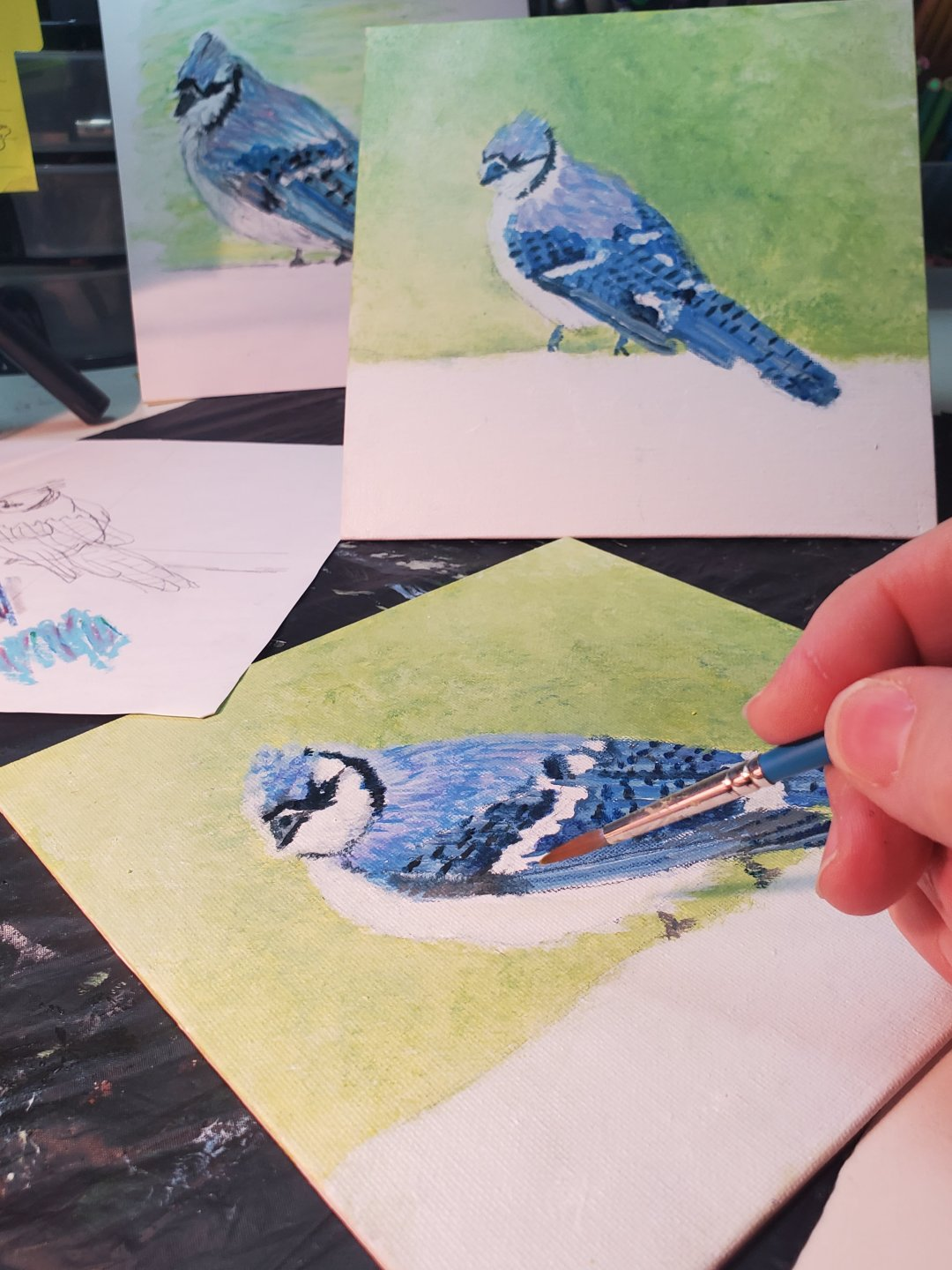 Conservation artist, snow artist, nature artist, famous artist, Artistic confidence,  artistic motivation, how to remove artist blocks, Pet portraits, feng shui art for the livingroom, feng shui art, n artist, local artist, master artist, female artist, bird art, nature art, modern art, expressionistic art, white art, teaching artist, increase creativity, Sandra Mucha, Sandra Mucha Artwork, art lessons, virtual art lessons, acrylics for beginners, watercolors for beginners, art exploring