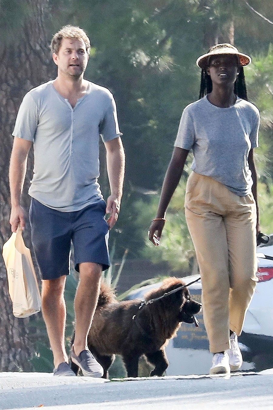 Actor Joshua Jackson and his stunning new longhaired girlfriend were seen taking the dogs out