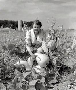 Arthur+Rothstein+farm+life