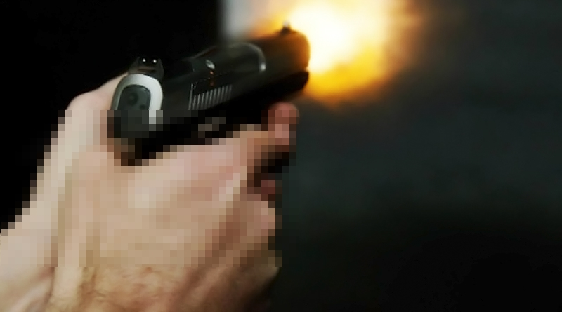 Arma-de-fogo