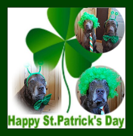 happyStPatricks