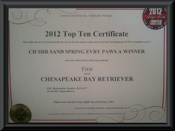 The Top Ten Certificate.