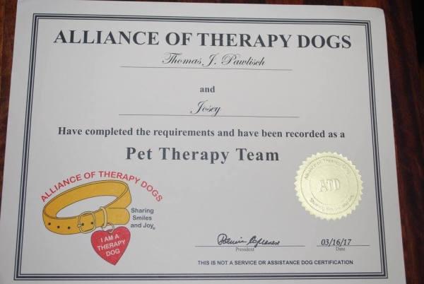 Glory\'s Puppies Accomplishments – Sand Spring Chesapeakes